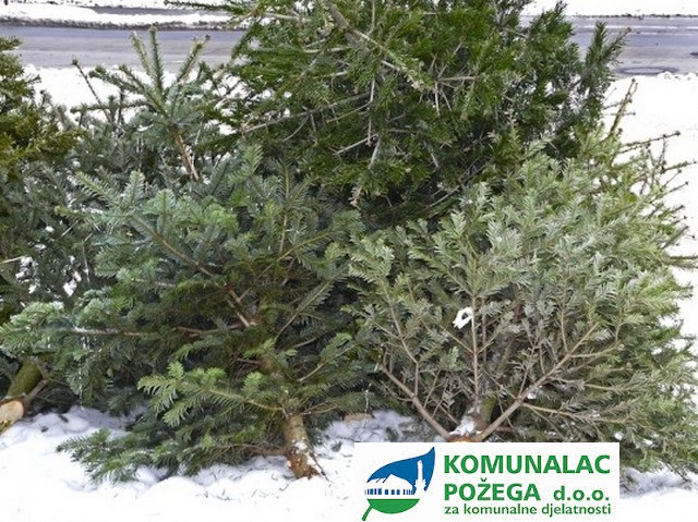 božićna drvca komunalac požega 3